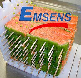 szaszłykarki Emsens