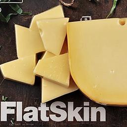 FlatSkin